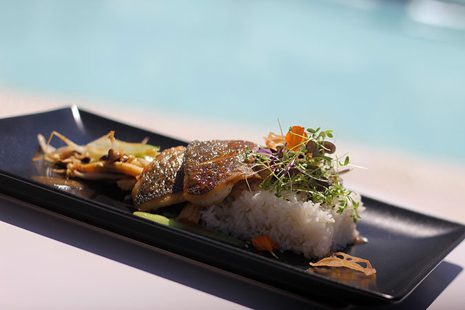 Whats-New-Ocean-Beach-Ibiza-New-Food-Sea-Bass