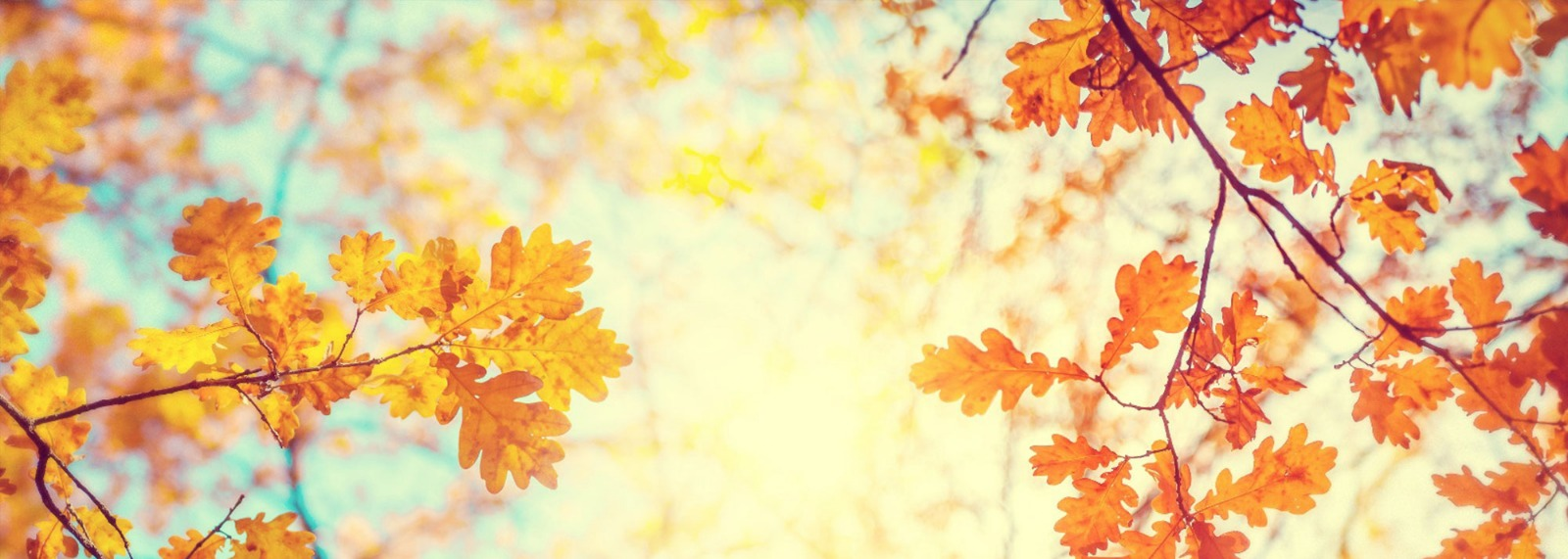7 Steps To A Brighter Autumn
